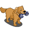 Golden Retriever 2-icon