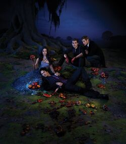 Season-3-Poster-the-vampire-diaries-25275004-1024-1166