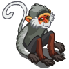 Douc Langur Monkey-icon