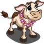Luau Calf-icon
