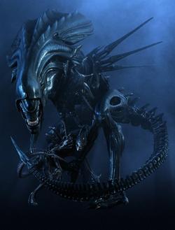 ALIEN/Xenomorphs - Thread on transformers home planet, luke skywalker's home planet, yoda's home planet, alien home planet, superman's home planet, krypton superman home planet, chewbacca's home planet, predator home planet,