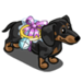 Ring Carrier Dog-icon