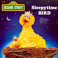 Sleepytime Bird