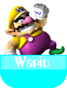 Wario MR
