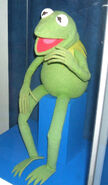 Kermit the frog