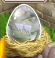 Zombie Dragon Egg.png