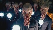 Beast ood
