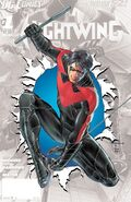 Nightwing Vol 3-0 Cover-2 Teaser