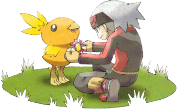 Giving a Ribbon to Torchic