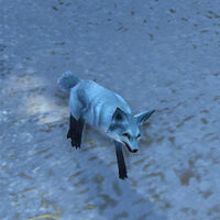 Kun-Lai Summit Arctic-Foxling00
