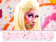 PF-Roman Reloaded booklet3