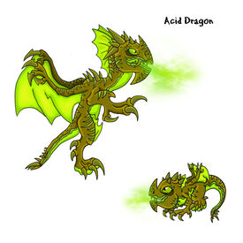Acid Dragon
