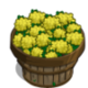 Mustard Bushel-icon