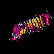 4EZG.pdb1