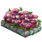 Peony Flowerbed-icon