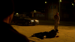 3x12 Walt shoots dealer