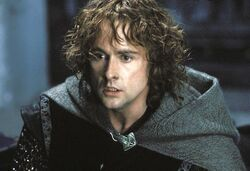 The-lord-of-the-rings-the-return-of-the-king-27-billy-boyd-peregrin-pippin-took
