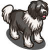 Dutch Sheep Dog-icon