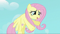 Fluttershy &#39;if I hold you down&#39; S2E02