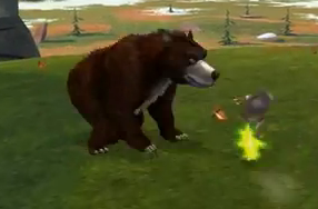 Bear2