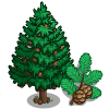 Metasequoia Tree-icon