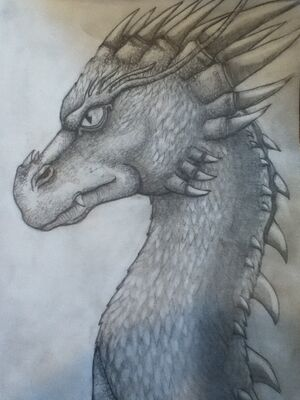 Eragon-type Dragon Sketch