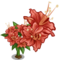 Full Bloom Flame Azalea-icon