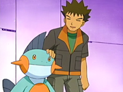 Brock and Marshtomp