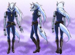 Wolf.full body