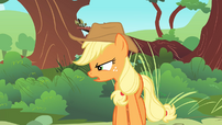 Applejack &#39;There they are!&#39; S1E23