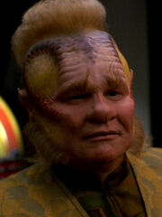 Neelix