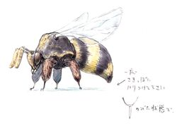 Bee FFXI Art