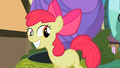 Apple Bloom grins S2E06.png