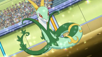 EP753 Serperior de Trip