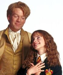 Gilderoy-lockhart-hermione-granger-gilderoy-lockhart-5327258-312-372