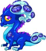 SapphireDragonAdult