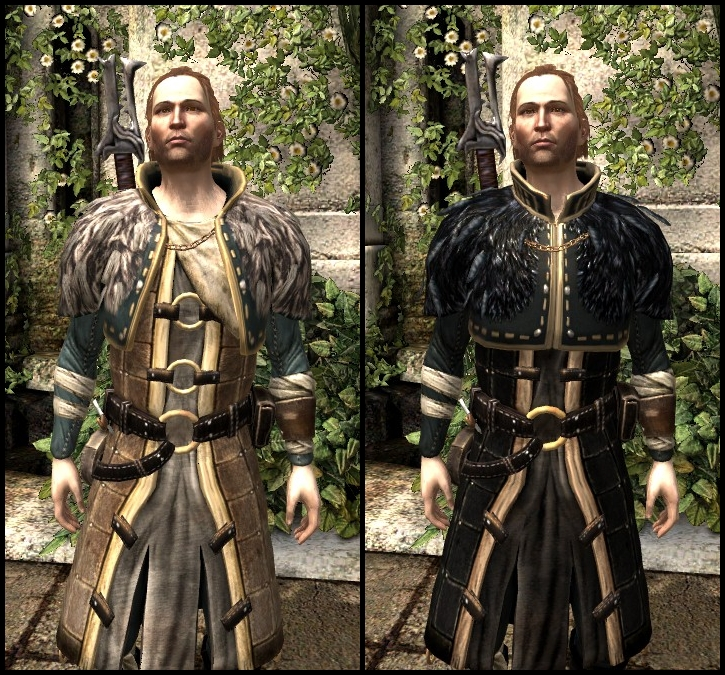 Dragon Age 2 Companion Armor
