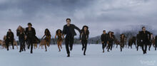 Bd2 battlebegins