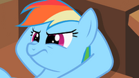 Rainbow Dash hearing wise words S2E8