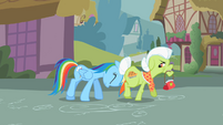 Rainbow Dash shoving Granny S2E8
