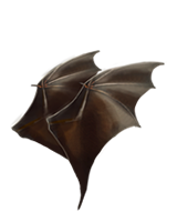 BatWings