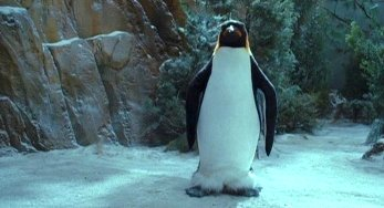 wiki meet the spartans penguin