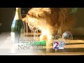 WLBZ-TV's Happy New Year Video ID For January 1, 2010
