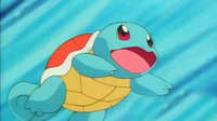 SquirtleOpening