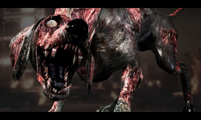 http://images1.wikia.nocookie.net/__cb20121007032651/residentevil/images/7/7e/Zombie_Dog_C.jpg