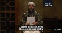 SNL Fred Armisen - Osama bin Laden