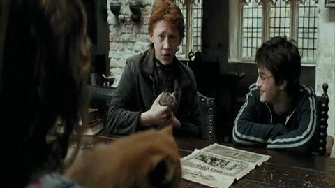 Harry Potter and the Prisoner of Azkaban - A warning from Mr Weasley