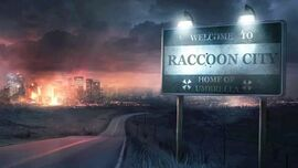RaccoonCityView2