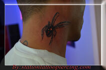 Black widow spider tattoo 3d