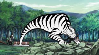 Ficha - Krotha Nyan 320px-Tiger_Vision_Staring_Bullet1